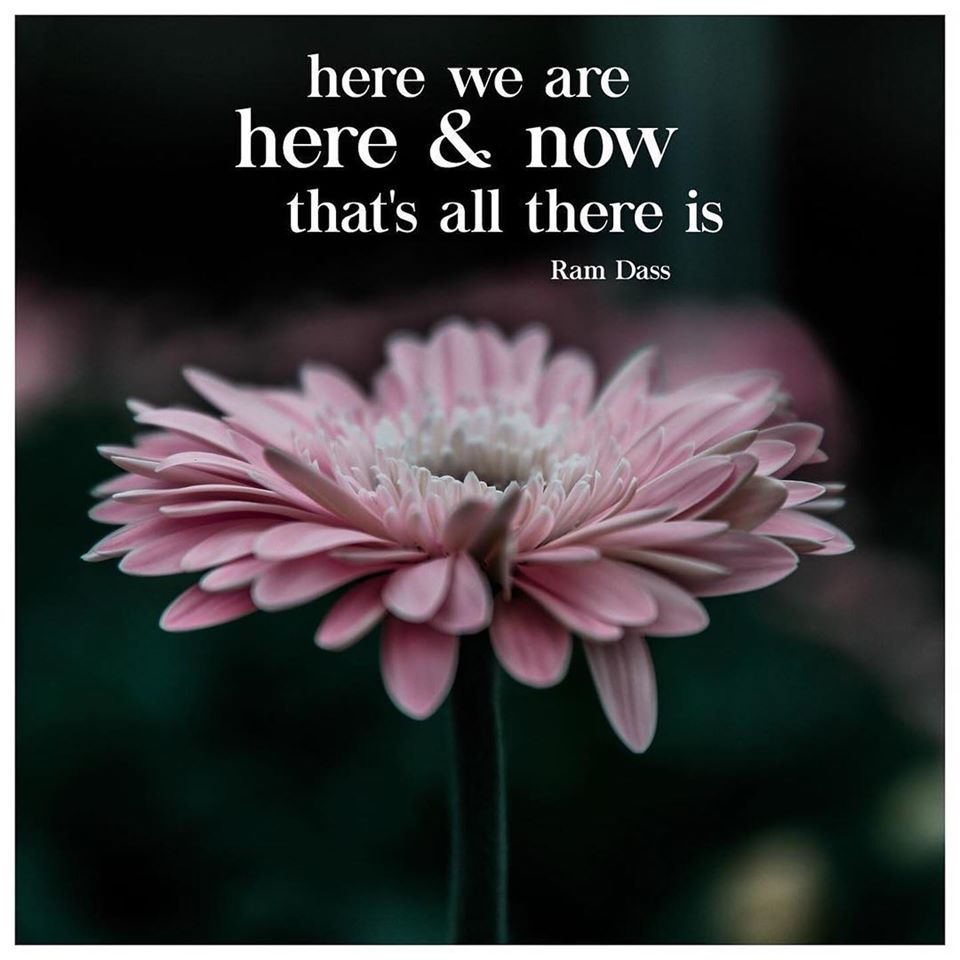 Here we are here & now that's all there is. - Ram Dass