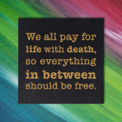 We all pay for life with death, so everything in between should be free - Bill Hicks Quote Magnet