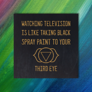 Watching television is like taking black spray paint to your third eye. -Bill Hicks Quote Magnet